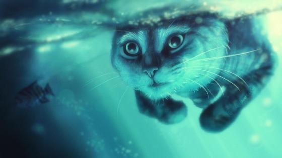 Swimming cat wallpaper