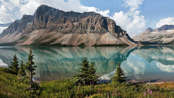 Bow Lake and Crowfoot Mountain (Banff National Park) wallpaper