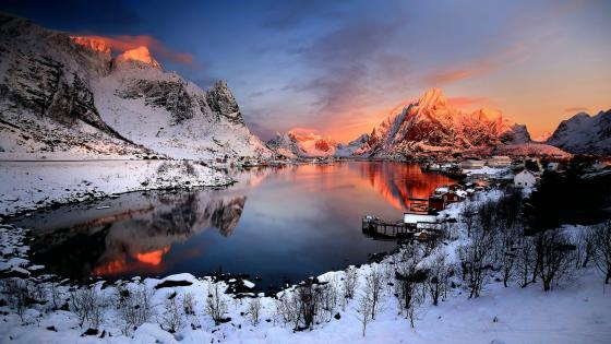 Snowy Reine (Lofoten, Norway) wallpaper