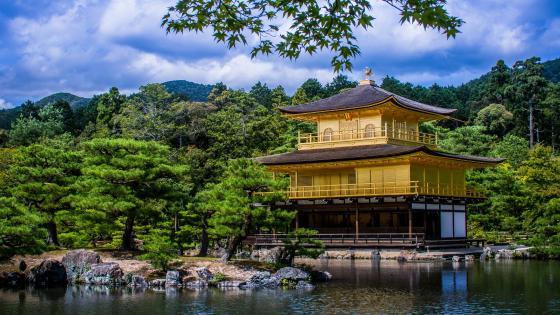 Kinkaku-ji (Rokuon-ji) Golden Pavilion wallpaper