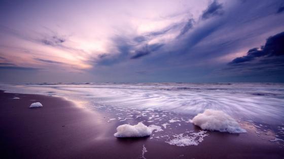 Purple seashore landscape wallpaper
