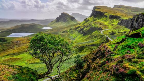 Green Quiraing Mountains wallpaper