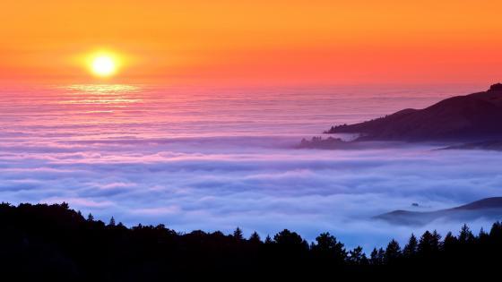 Foggy sunset wallpaper