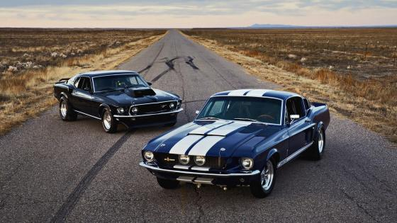 Ford Mustang cars wallpaper
