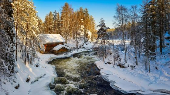 Stream in Kuusamo, Finland wallpaper