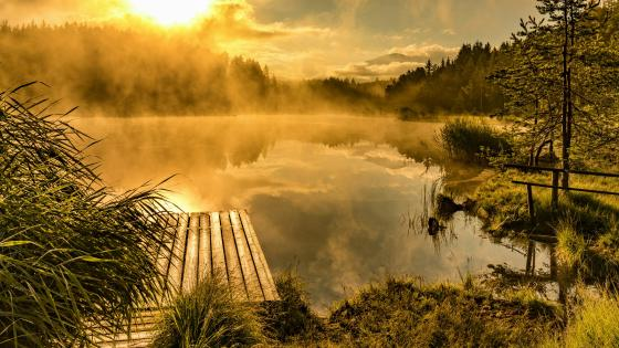 Misty sunrise reflection wallpaper