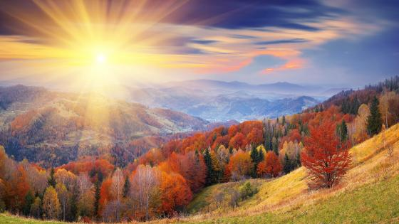 Fall landscape wallpaper