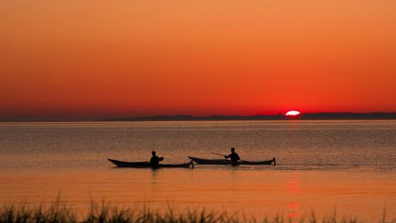 Rowing boats in the sunset wallpaper