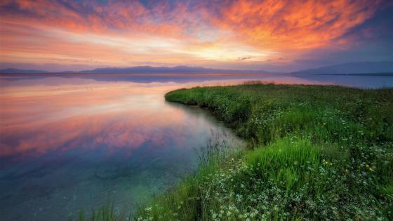 Sayram Lake at sunrise wallpaper