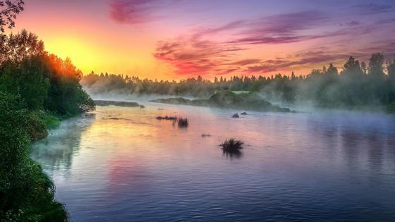 Misty river sunrise wallpaper