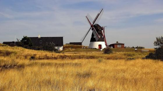 Dutch Windmill wallpaper