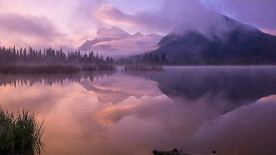 Purple landscape reflectied in Vermilion Lakes at dawn wallpaper