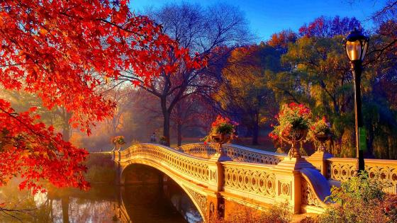 Bow Bridge in Central Park wallpaper