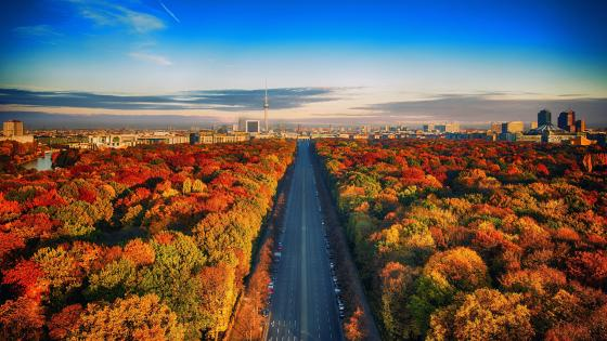 Tiergarten at fall wallpaper