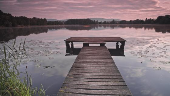 Purple dawn from a wooden dock wallpaper