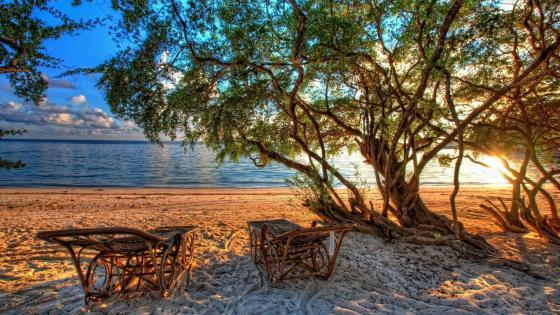 Sunbeds in a paradise beach wallpaper