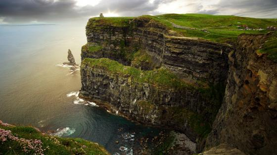 Cliffs of Moher (Ireland) wallpaper