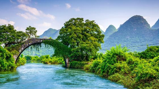 Yulong Bridge in Yangshuo Park wallpaper