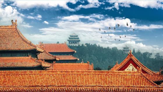 Castle roof in Forbidden city wallpaper