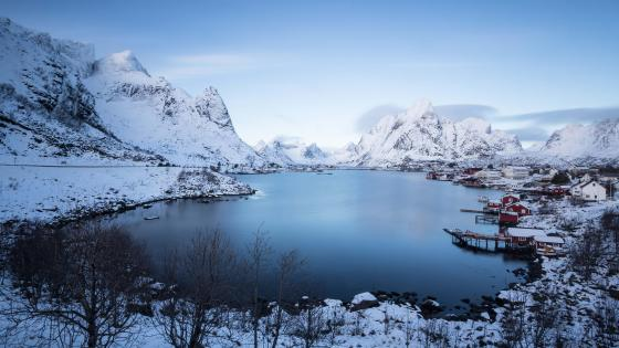 Reine in winter wallpaper