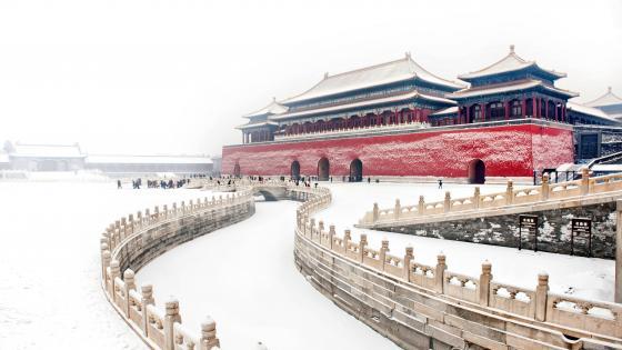 Winter Palace wallpaper
