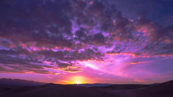 Desert dawn wallpaper