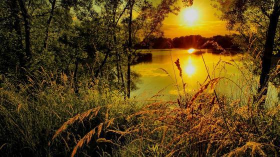 Sunset from lakeside wallpaper
