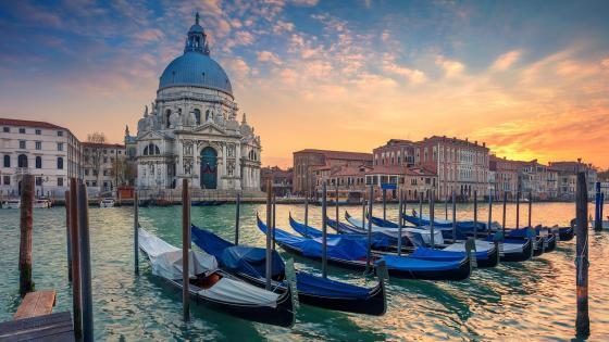 Santa Maria della Salute from Grand Canal wallpaper