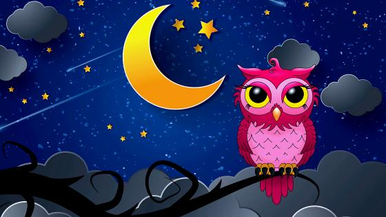 Pink owl wallpaper