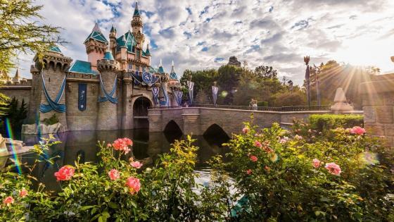 Sleeping Beauty Castle wallpaper