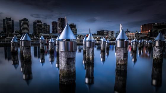 Wooden pylons in Yarra River Docklands (Melbourne) wallpaper