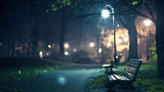 Lonely bench at night wallpaper