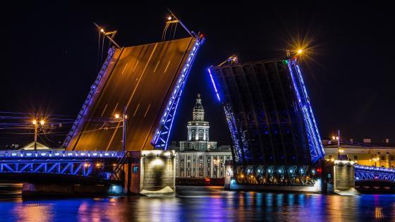 The Palace Bridge and Kunstkamera wallpaper
