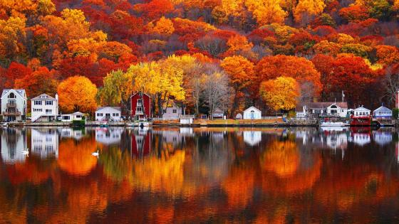 Autumn colors reflected in Housatonic river wallpaper