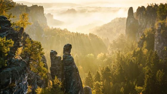 Ray of lights at Saxon Switzerland National Park wallpaper