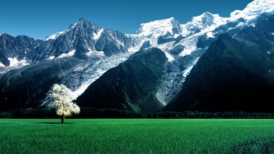 Bossons Glacier (Mont Blanc massif) wallpaper