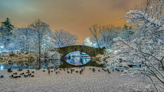 Bow Bridge in winter (Central Park) wallpaper