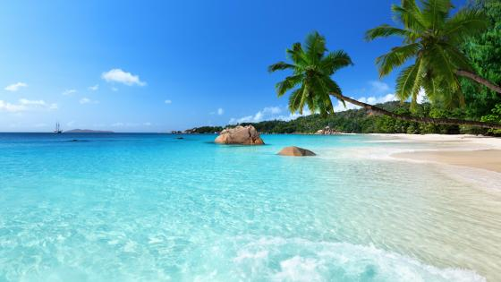 Chevalier Bay, Praslin wallpaper