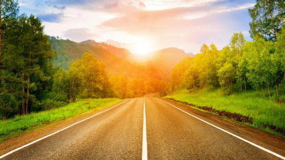 Sunny road wallpaper