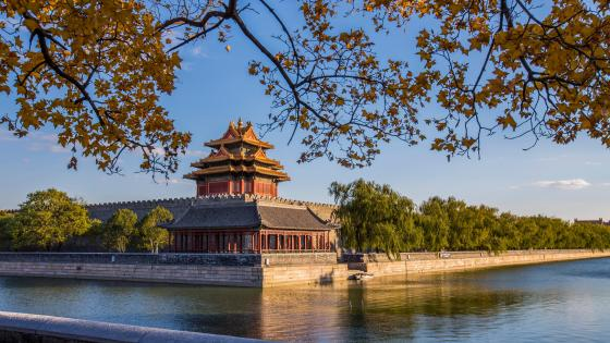 Forbidden City wallpaper