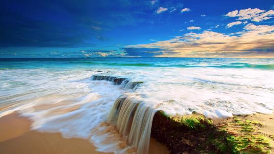 Tropical ocean wallpaper