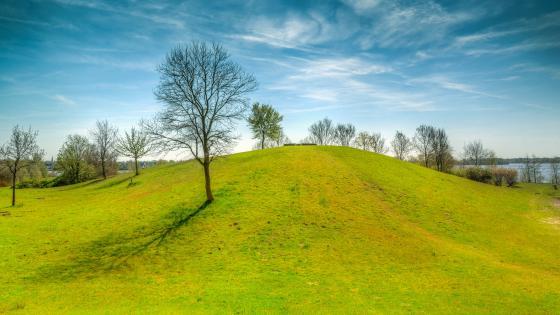 Green mound wallpaper