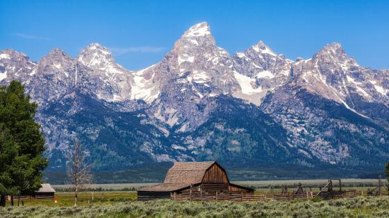 Moulton Barn and The Grand Tetons behind wallpaper