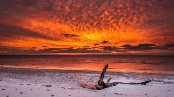 Red sundown on the white sandy beach wallpaper