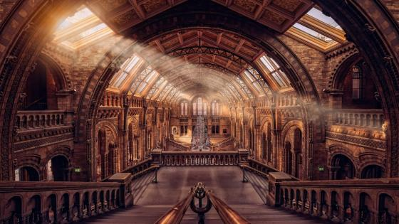 Natural History Museum (London) wallpaper