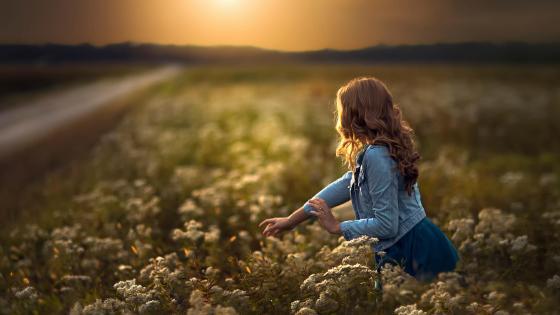 Girl in flower field wallpaper
