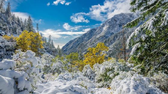 Autumn snow in the Trinity Alps (California) wallpaper