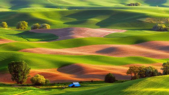 Steptoe Butte State Park wallpaper