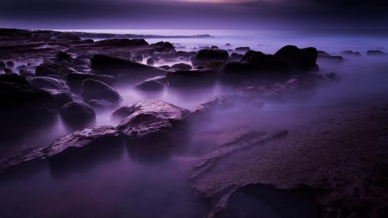 Purple mist wallpaper