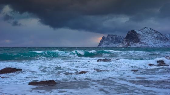 Sea storm wallpaper